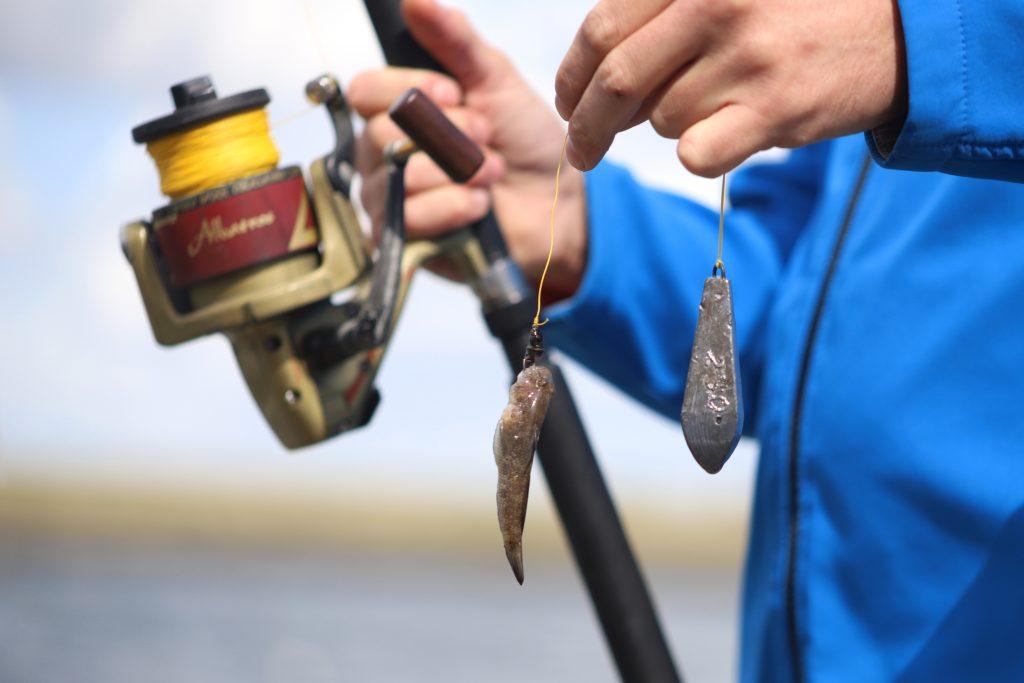 Vistrip rondvaart visser in actie